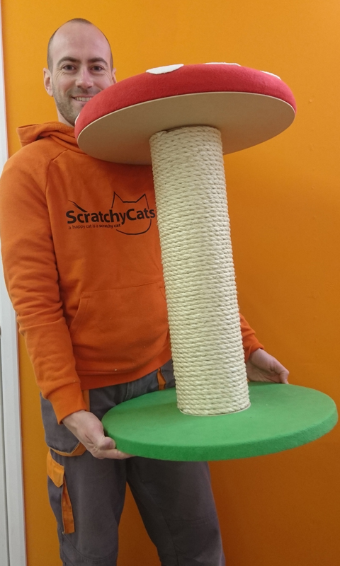 Large Toadstool Cat Scratching Post | ScratchyCats