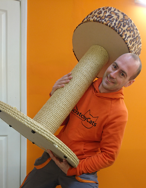 Giant Cat Scratching Post with Large Bed   ScratchyCats