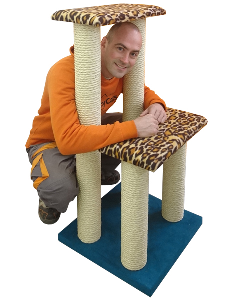 Luxury Twin Step Cat Climbing Frame