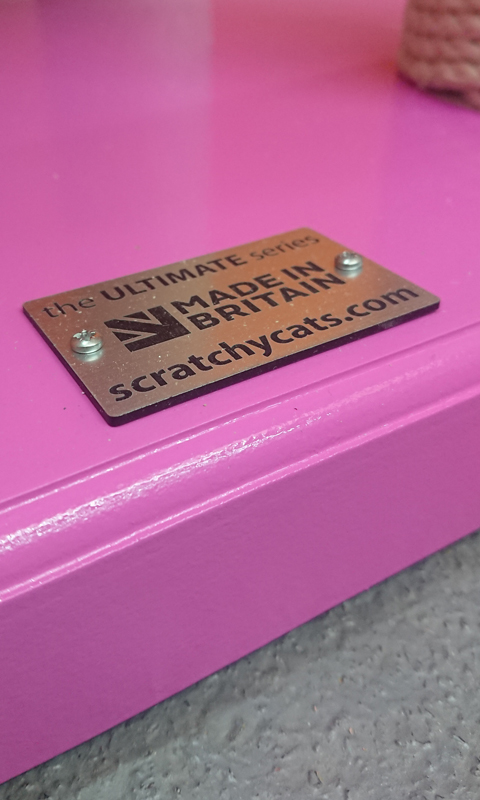 Ultimate Series Painted Gloss Pink | ScratchyCats