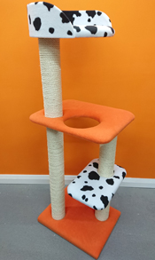 Multi-Coloured Cat Scratching Post | ScratchyCats