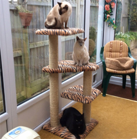 Tiger Print Luxury Cat Tree
