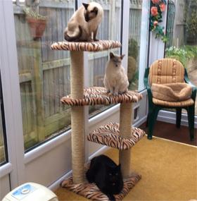 Tiger Print Luxury Cat Tree