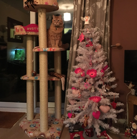 Luxury Large Cat Tree Furniture with 2 Cat Beds